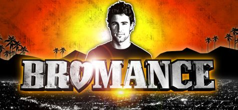 bromance guy posing on the beach in front of the mountains sunset illustration MTV reality TV show