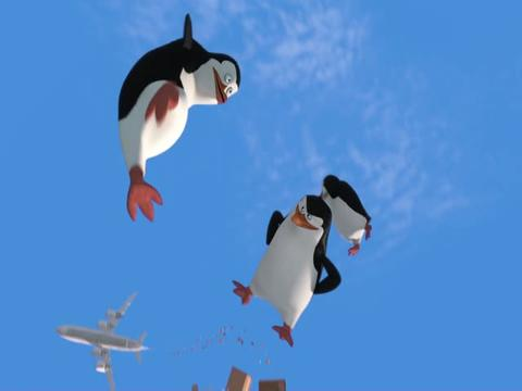 Orange Carpet: Os Pinguins de Madagáscar