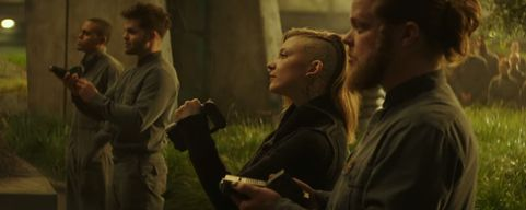 Cressida and Castor and Pollax