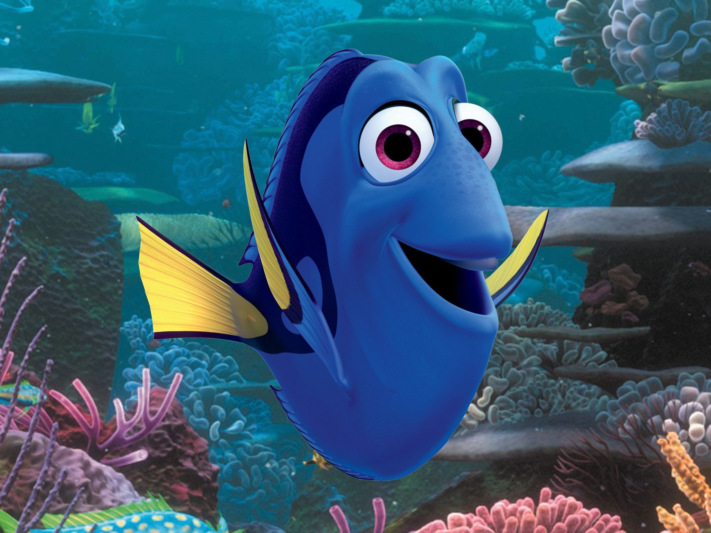 Everything You Need To Know About Finding Dory s New Characters MTV
