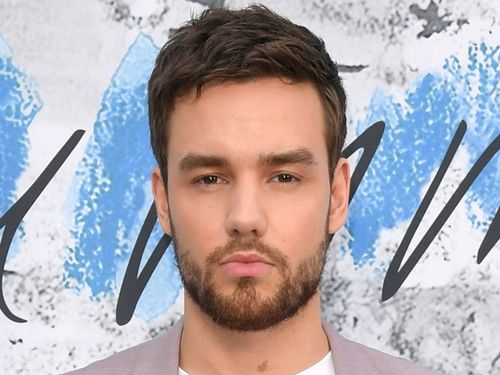 Liam Payne Makes His Relationship With Model Maya Henry Instagram Official