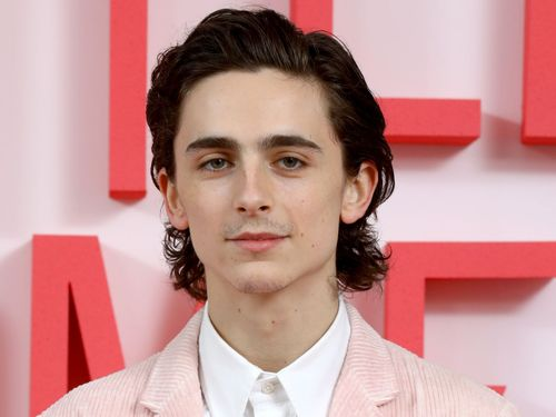 Nothing To See Here, Just Timothée Chalamet And Zendaya Hanging Out At Bed Bath & Beyond