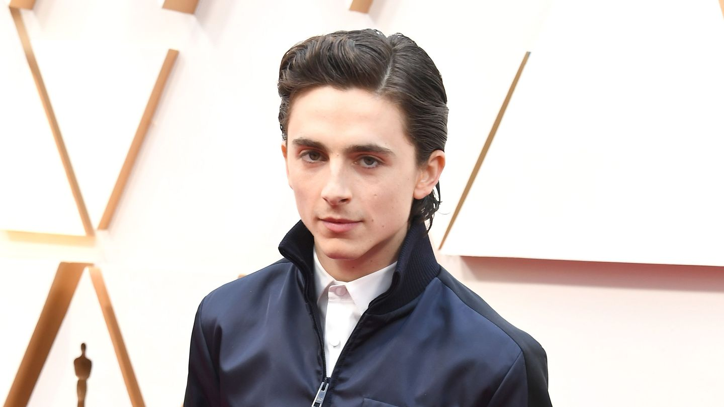 The Timothée Chalamet Hive Can't Get Over The Bathtub Scene In The French Dispatch Trailer