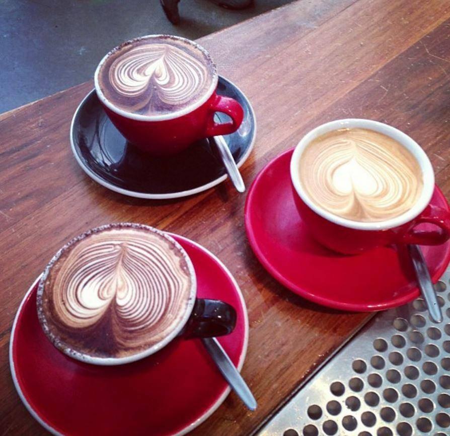 coffee_branch.jpg