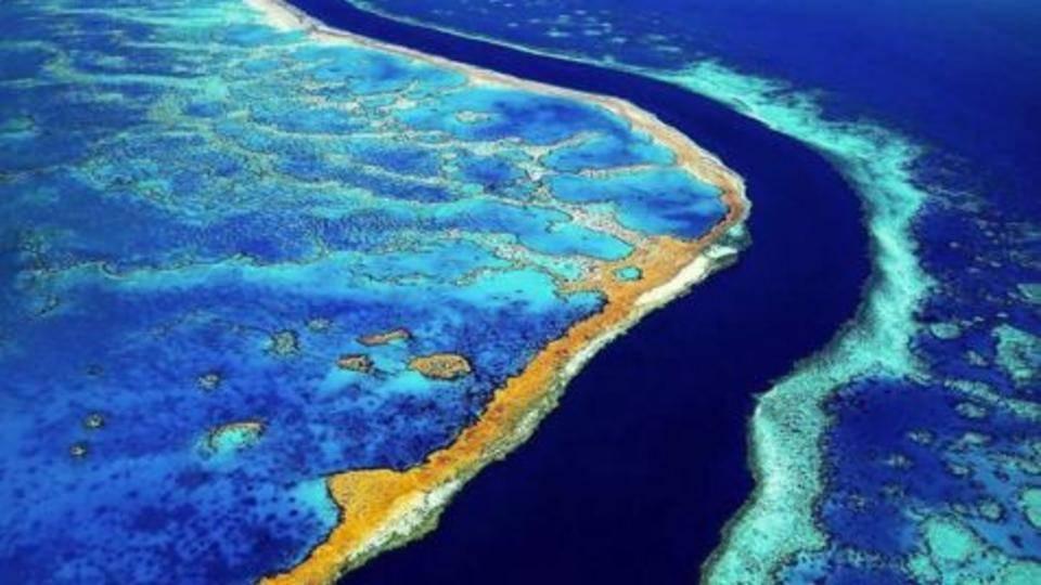 5._barrier_reef.jpg