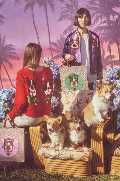 gucci-chinese-new-year-capsule-collection-1.jpg