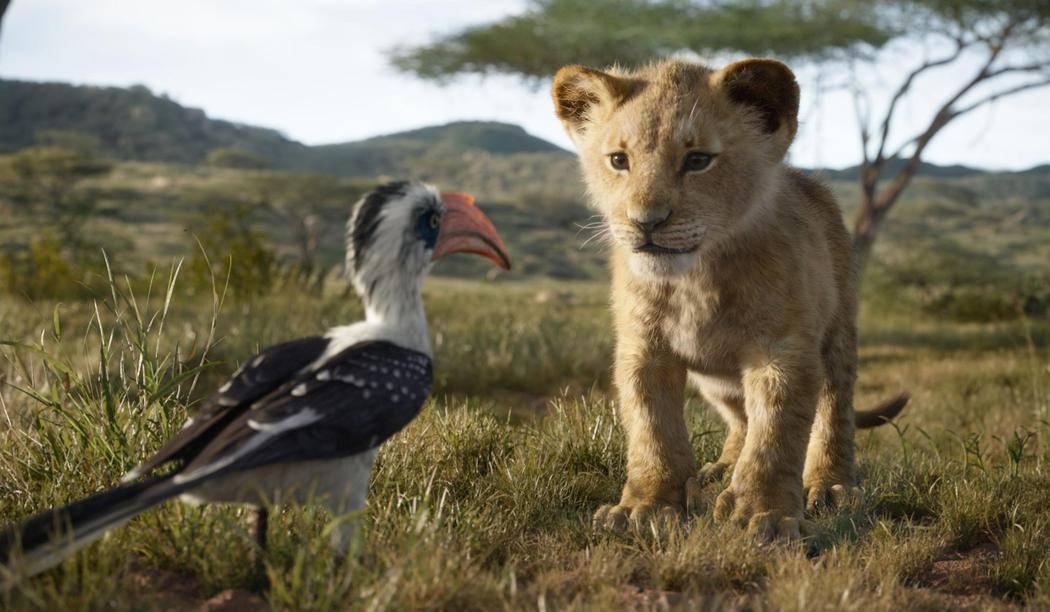 lion_king_disney_july_17.jpg
