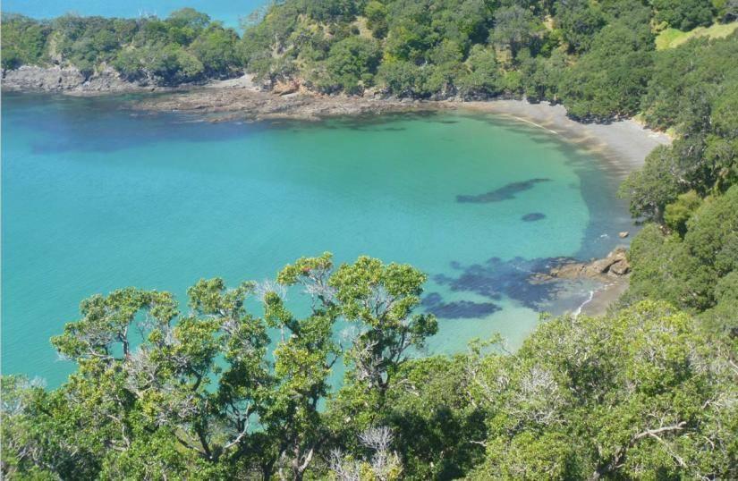 resizedimage825538-mimiwhangata-marine-reserve-paparahi-point.jpg