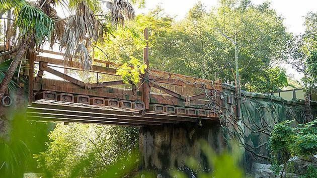 avatar-themepark-bridge.jpg