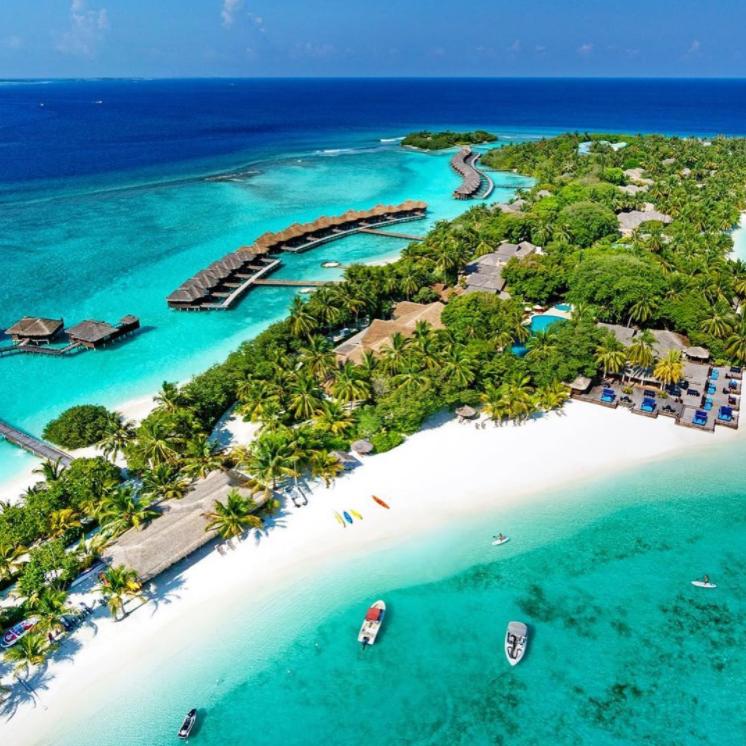 scorpio_-_maldives_-_maldives.png