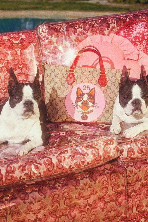 gucci-chinese-new-year-capsule-collection-3.jpg