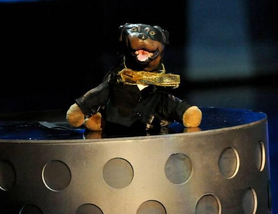 /content/ontv/movieawards/2009/photo/flipbook/09-show-highlights/triumph-insult-comic-dog-present-88088282.jpg
