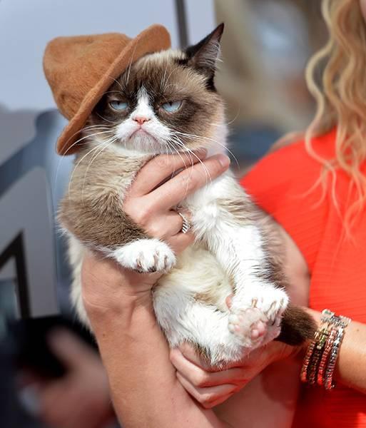 /content/ontv/movieawards/2012/photo/flipbooks/celebrity-beef/2014-grumpy-cat-484734347.jpg