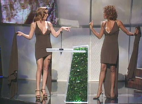 /content/ontv/vma/2008/photo/flipbooks/vma-mayhem/VMA1998-Whitney-Mariah-same_dress_3.jpg