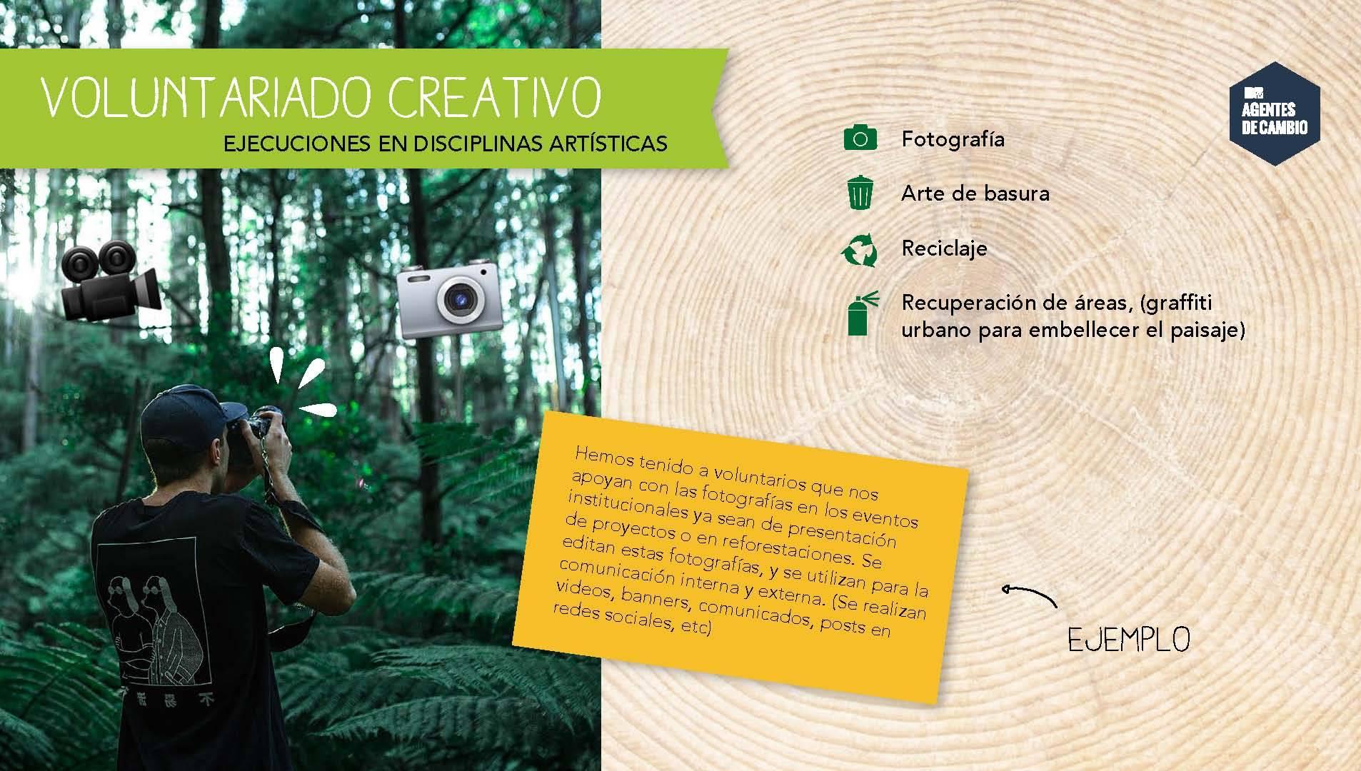 mgid:file:gsp:scenic:/international/mtvla.com-new/articulos/2016/abril/26/reforestamos_mexico_1_Page_07.jpg