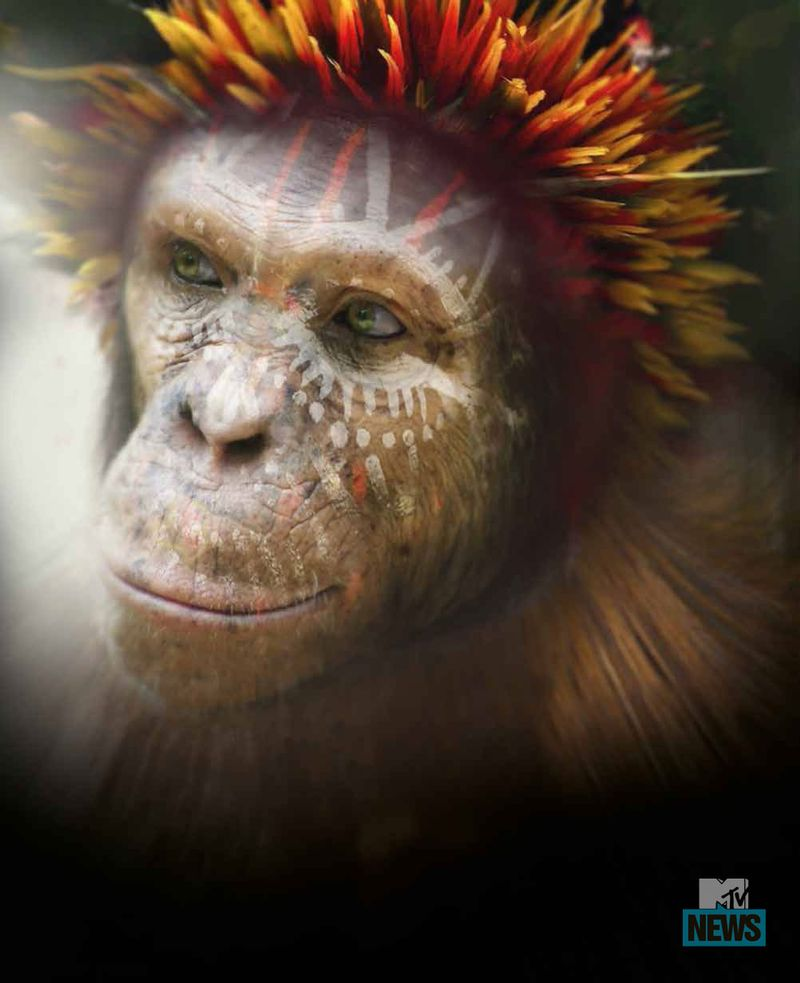 the concept of apes in es savage rumbaughs language training of apes and joel wallmans can apes lear College paper service uetermpaperoytrfieldbeeus the issue of modifying the perceptions of body imagery in todays world according to linda overstreet.